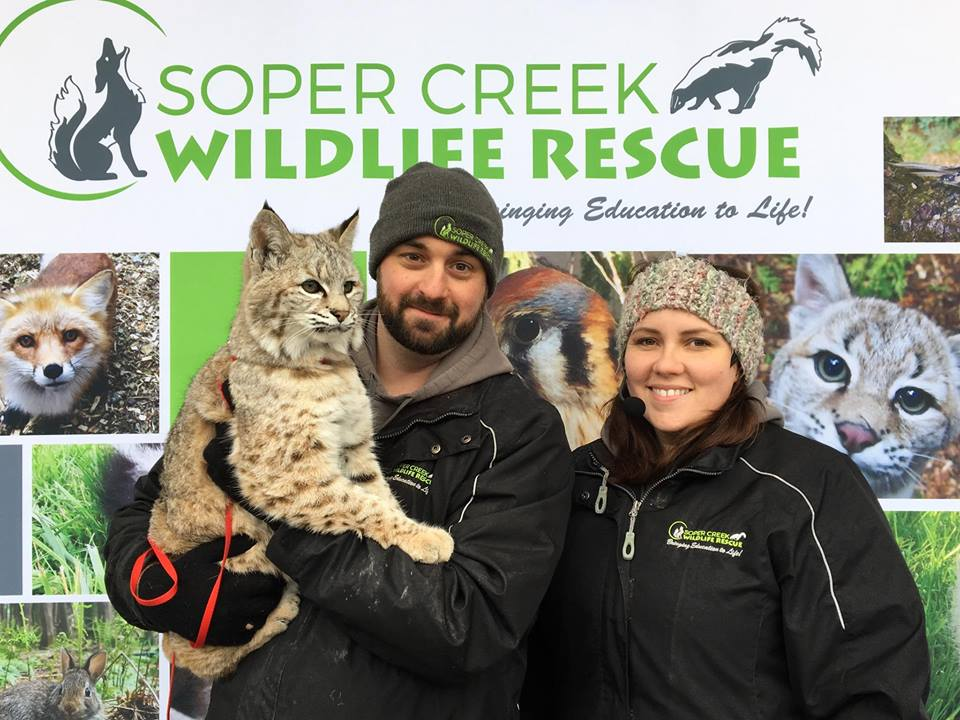 Soper Creek Wildlife Rescue
